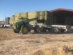 Loading Square Bales