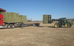 Loading Hay in a truck